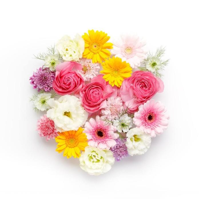 丸いお花、ウィジェット