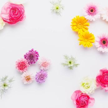 花の背景、サイトベース、サイト背景