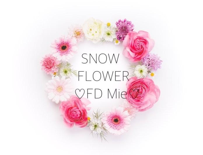 50.SF用 Snow Flower FD Mie② 右ウィジェット